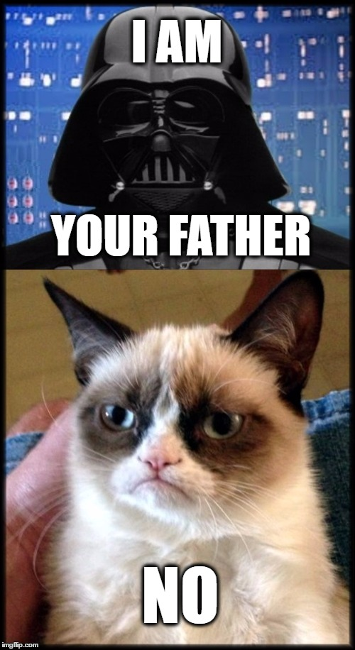 I AM NO YOUR FATHER | image tagged in fathers day,darth vader,grumpy cat,scumbag parents | made w/ Imgflip meme maker
