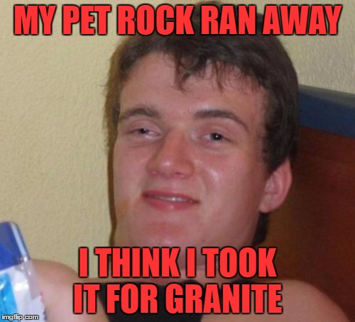 i miss fluffy | MY PET ROCK RAN AWAY I THINK I TOOK IT FOR GRANITE | image tagged in memes,10 guy | made w/ Imgflip meme maker