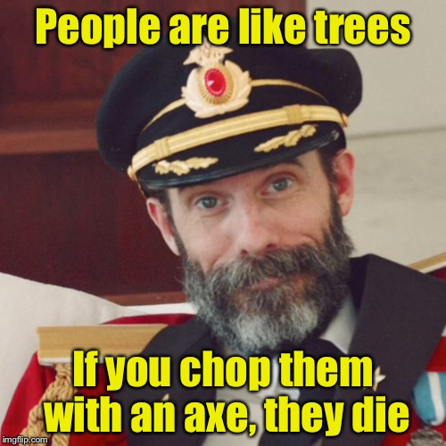 Tree Metaphor? | People are like trees If you chop them with an axe, they die | image tagged in captain obvious,memes,metaphors | made w/ Imgflip meme maker