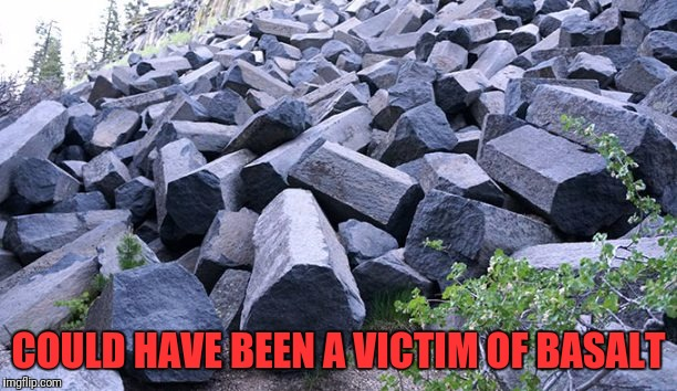 COULD HAVE BEEN A VICTIM OF BASALT | made w/ Imgflip meme maker