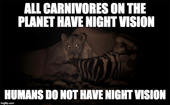 Veganism | ALL CARNIVORES ON THE PLANET HAVE NIGHT VISION HUMANS DO NOT HAVE NIGHT VISION | image tagged in go vegan | made w/ Imgflip meme maker
