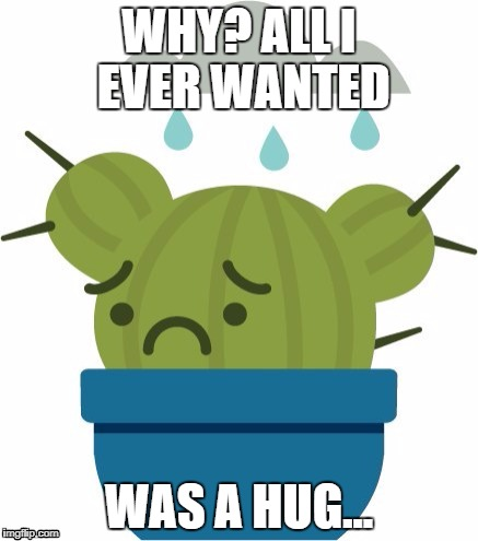 all i ever wanted was a hug im never included | WHY? ALL I EVER WANTED WAS A HUG... | image tagged in free hugs,cactus | made w/ Imgflip meme maker