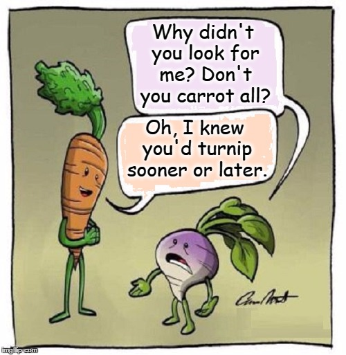 Vegan Stand-Up Comedy | Why didn't you look for me? Don't you carrot all? Oh, I knew you'd turnip sooner or later. | image tagged in vince vance,carrots,turnips,vegan,vegan jokes,stand-up veggies | made w/ Imgflip meme maker