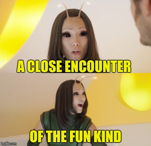 A CLOSE ENCOUNTER OF THE FUN KIND | image tagged in bad pun mantis | made w/ Imgflip meme maker