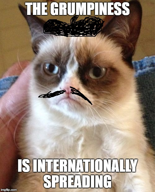 Grumpy Cat Meme | THE GRUMPINESS IS INTERNATIONALLY SPREADING | image tagged in memes,grumpy cat | made w/ Imgflip meme maker