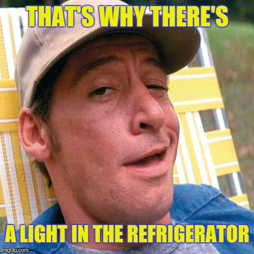 THAT'S WHY THERE'S A LIGHT IN THE REFRIGERATOR | made w/ Imgflip meme maker
