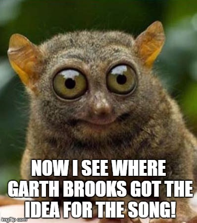big eyes smiling critter | NOW I SEE WHERE GARTH BROOKS GOT THE IDEA FOR THE SONG! | image tagged in big eyes smiling critter | made w/ Imgflip meme maker