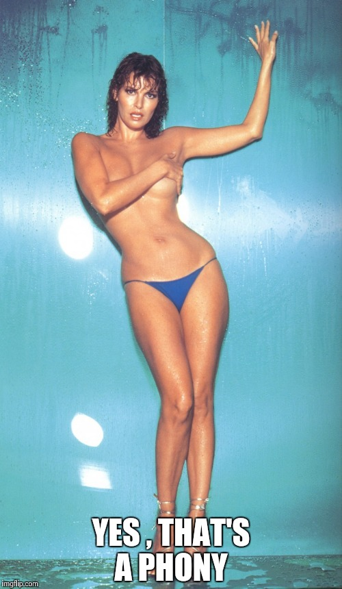 Raquel Welch | YES , THAT'S A PHONY | image tagged in raquel welch | made w/ Imgflip meme maker