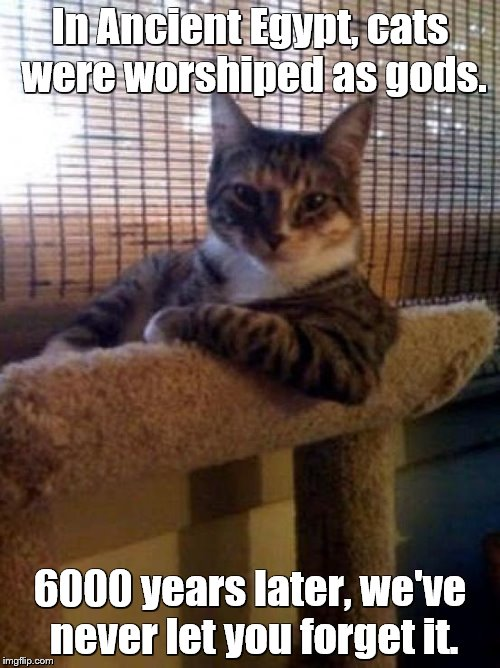 The Most Interesting Cat In The World Meme | In Ancient Egypt, cats were worshiped as gods. 6000 years later, we've never let you forget it. | image tagged in memes,the most interesting cat in the world | made w/ Imgflip meme maker