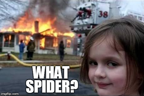 WHAT SPIDER? | made w/ Imgflip meme maker