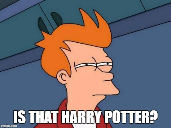 Futurama Fry Meme | IS THAT HARRY POTTER? | image tagged in memes,futurama fry | made w/ Imgflip meme maker