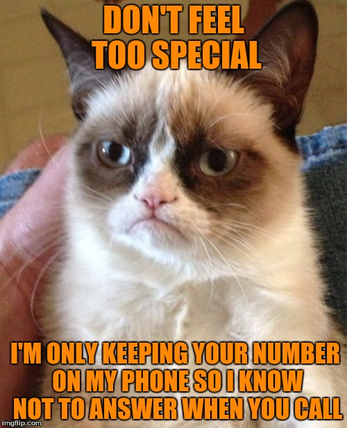 Grumpy Cat Meme | DON'T FEEL TOO SPECIAL I'M ONLY KEEPING YOUR NUMBER ON MY PHONE SO I KNOW NOT TO ANSWER WHEN YOU CALL | image tagged in memes,grumpy cat | made w/ Imgflip meme maker