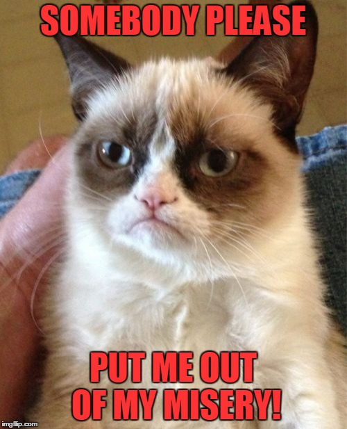 Grumpy Cat Meme | SOMEBODY PLEASE PUT ME OUT OF MY MISERY! | image tagged in memes,grumpy cat | made w/ Imgflip meme maker