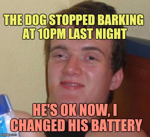 Winning Points With Neighbors | THE DOG STOPPED BARKING AT 10PM LAST NIGHT HE'S OK NOW, I CHANGED HIS BATTERY | image tagged in memes,10 guy | made w/ Imgflip meme maker