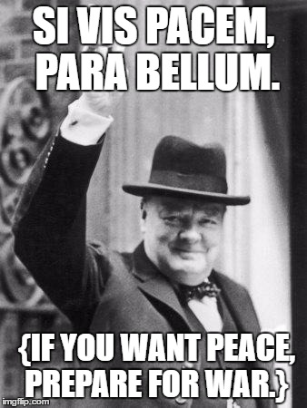 SI VIS PACEM, PARA BELLUM. {IF YOU WANT PEACE, PREPARE FOR WAR.} | image tagged in peace | made w/ Imgflip meme maker