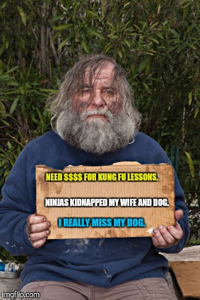 A man's got to set his priorities.  | NEED $$$$ FOR KUNG FU LESSONS. I REALLY MISS MY DOG. NINJAS KIDNAPPED MY WIFE AND DOG. | image tagged in funny sign,homeless,money,dog | made w/ Imgflip meme maker