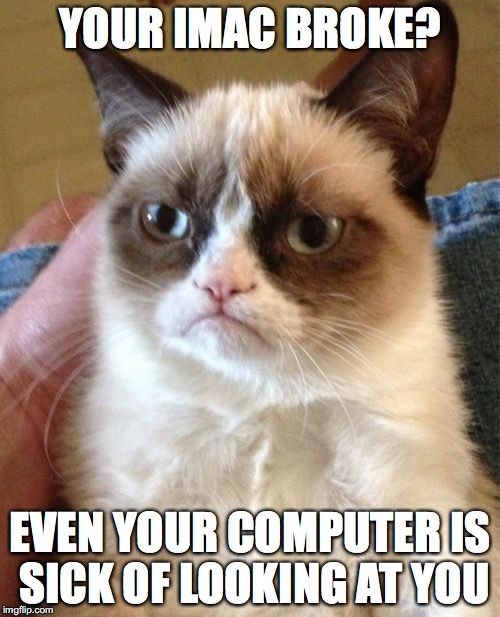 Grumpy Cat Meme | YOUR IMAC BROKE? EVEN YOUR COMPUTER IS SICK OF LOOKING AT YOU | image tagged in memes,grumpy cat | made w/ Imgflip meme maker