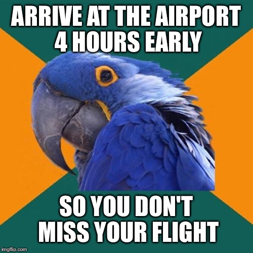 Paranoid Parrot Meme | ARRIVE AT THE AIRPORT 4 HOURS EARLY SO YOU DON'T MISS YOUR FLIGHT | image tagged in memes,paranoid parrot | made w/ Imgflip meme maker