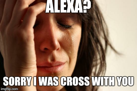 First World Problems Meme | ALEXA? SORRY I WAS CROSS WITH YOU | image tagged in memes,first world problems | made w/ Imgflip meme maker