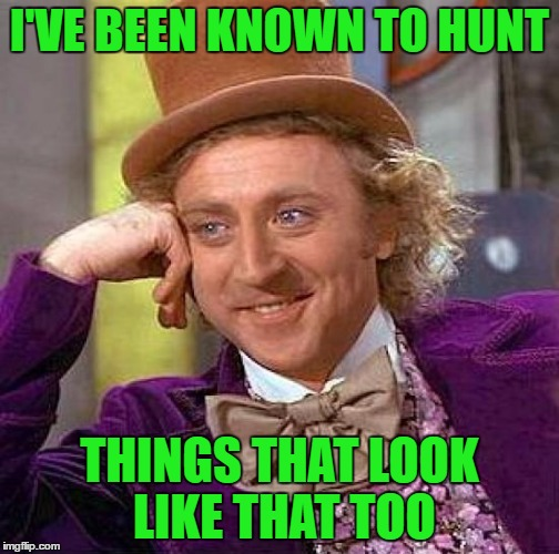 Creepy Condescending Wonka Meme | I'VE BEEN KNOWN TO HUNT THINGS THAT LOOK LIKE THAT TOO | image tagged in memes,creepy condescending wonka | made w/ Imgflip meme maker