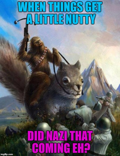 Squirrel week | WHEN THINGS GET A LITTLE NUTTY DID NAZI THAT COMING EH? | image tagged in wookie riding a squirrel killing nazis your argument is invalid,squirrel week,a robroman event | made w/ Imgflip meme maker