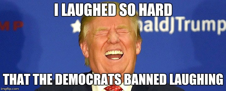 I LAUGHED SO HARD THAT THE DEMOCRATS BANNED LAUGHING | made w/ Imgflip meme maker