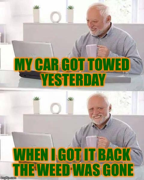 Hide the Pain Harold Meme | MY CAR GOT TOWED YESTERDAY WHEN I GOT IT BACK THE WEED WAS GONE | image tagged in memes,hide the pain harold | made w/ Imgflip meme maker