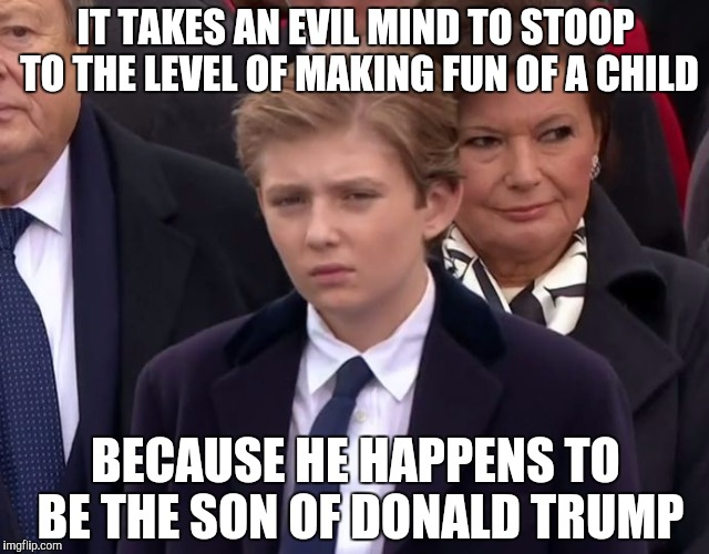 IT TAKES AN EVIL MIND TO STOOP TO THE LEVEL OF MAKING FUN OF A CHILD BECAUSE HE HAPPENS TO BE THE SON OF DONALD TRUMP | image tagged in baron trump | made w/ Imgflip meme maker