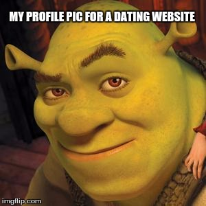 Shrek Sexy Face | MY PROFILE PIC FOR A DATING WEBSITE | image tagged in shrek sexy face | made w/ Imgflip meme maker