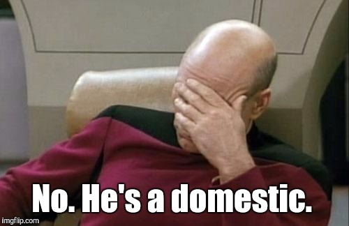 Captain Picard Facepalm Meme | No. He's a domestic. | image tagged in memes,captain picard facepalm | made w/ Imgflip meme maker