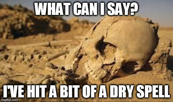 WHAT CAN I SAY? I'VE HIT A BIT OF A DRY SPELL | made w/ Imgflip meme maker