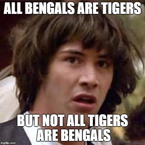 Conspiracy Keanu Meme | ALL BENGALS ARE TIGERS BUT NOT ALL TIGERS ARE BENGALS | image tagged in memes,conspiracy keanu | made w/ Imgflip meme maker