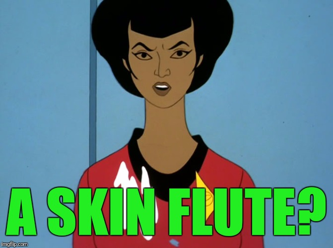 start trek cartoon | A SKIN FLUTE? | image tagged in start trek cartoon | made w/ Imgflip meme maker