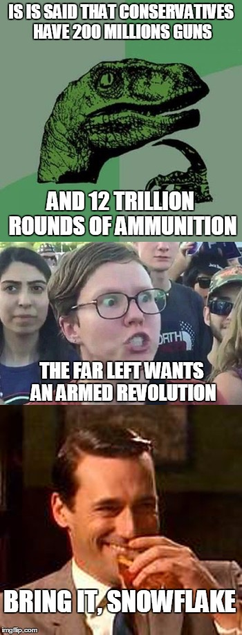 IS IS SAID THAT CONSERVATIVES HAVE 200 MILLIONS GUNS; AND 12 TRILLION ROUNDS OF AMMUNITION; THE FAR LEFT WANTS AN ARMED REVOLUTION; BRING IT, SNOWFLAKE | image tagged in gun control,liberal logic,violence,revolution | made w/ Imgflip meme maker