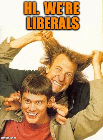 DUMB and dumber | HI.  WE'RE LIBERALS | image tagged in dumb and dumber | made w/ Imgflip meme maker