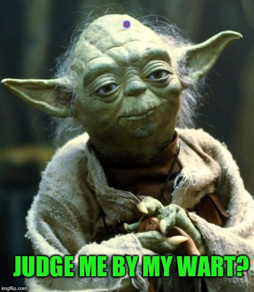 Yodas Wart | . JUDGE ME BY MY WART? | image tagged in memes,yoda star wars,meming to a meme,gifs,dogs,little shits | made w/ Imgflip meme maker