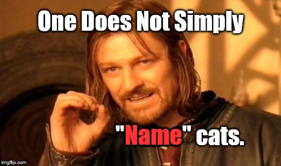 "One Does Not Simply Meme | One Does Not Simply ""Name"" cats. Name 