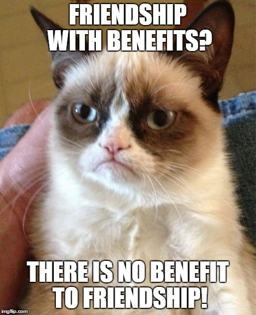 Grumpy Cat Meme | FRIENDSHIP WITH BENEFITS? THERE IS NO BENEFIT TO FRIENDSHIP! | image tagged in memes,grumpy cat | made w/ Imgflip meme maker