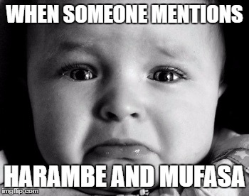 :( | WHEN SOMEONE MENTIONS HARAMBE AND MUFASA | image tagged in memes,sad baby,harambe,mufasa | made w/ Imgflip meme maker
