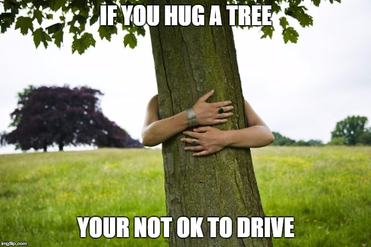 How to know if your too drunk to drive | IF YOU HUG A TREE YOUR NOT OK TO DRIVE | image tagged in dui,drink driving | made w/ Imgflip meme maker