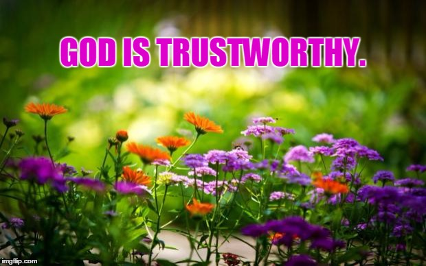 GOD IS TRUSTWORTHY. | image tagged in flowers | made w/ Imgflip meme maker
