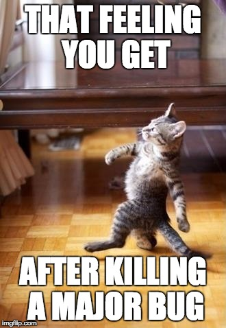Cool Cat Stroll Meme | THAT FEELING YOU GET AFTER KILLING A MAJOR BUG | image tagged in memes,cool cat stroll | made w/ Imgflip meme maker