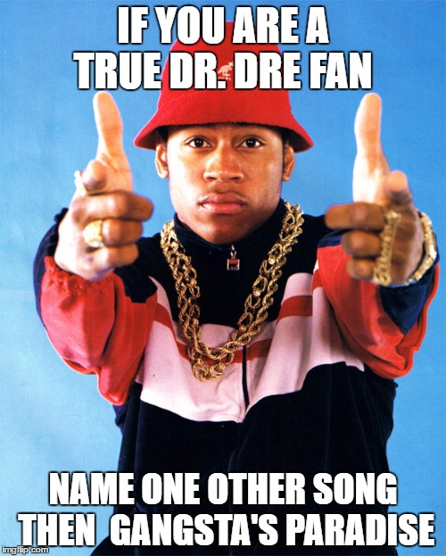 true fan | IF YOU ARE A TRUE DR. DRE FAN NAME ONE OTHER SONG THEN  GANGSTA'S PARADISE | image tagged in hiphop,ll cool j,dr dre | made w/ Imgflip meme maker