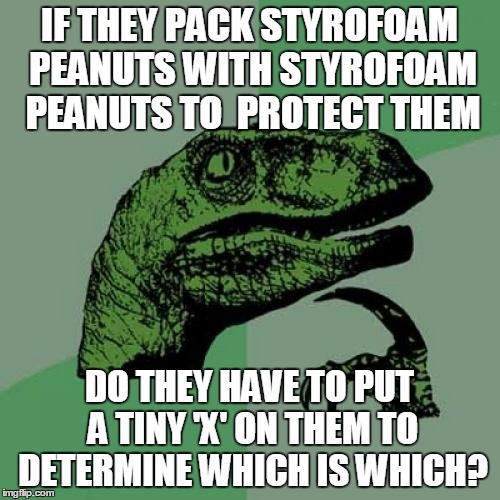 Philosoraptor Meme | IF THEY PACK STYROFOAM PEANUTS WITH STYROFOAM PEANUTS TO  PROTECT THEM DO THEY HAVE TO PUT A TINY 'X' ON THEM TO DETERMINE WHICH IS WHICH? | image tagged in memes,philosoraptor | made w/ Imgflip meme maker