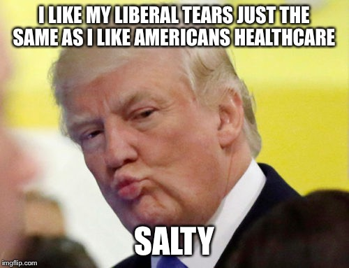 Rule thirty four | I LIKE MY LIBERAL TEARS JUST THE SAME AS I LIKE AMERICANS HEALTHCARE SALTY | image tagged in rule thirty four | made w/ Imgflip meme maker