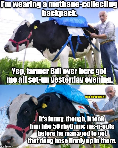 Backpack full of secrets. | I'm wearing a methane-collecting backpack. Yep, farmer Bill over here got me all set-up yesterday evening. It's funny, though, it took him l | image tagged in bovine flatulence,methane backpack,phunny,animal rights,cows,beastiality | made w/ Imgflip meme maker