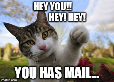 HEY YOU!!                 HEY! HEY! YOU HAS MAIL... | image tagged in hey you hey hey | made w/ Imgflip meme maker
