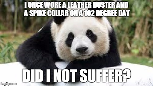 I ONCE WORE A LEATHER DUSTER AND A SPIKE COLLAR ON A 102 DEGREE DAY DID I NOT SUFFER? | made w/ Imgflip meme maker