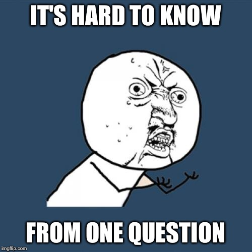 Y U No Meme | IT'S HARD TO KNOW FROM ONE QUESTION | image tagged in memes,y u no | made w/ Imgflip meme maker