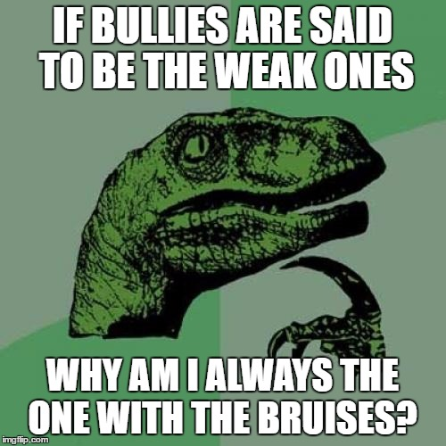 Philosoraptor Meme | IF BULLIES ARE SAID TO BE THE WEAK ONES WHY AM I ALWAYS THE ONE WITH THE BRUISES? | image tagged in memes,philosoraptor | made w/ Imgflip meme maker